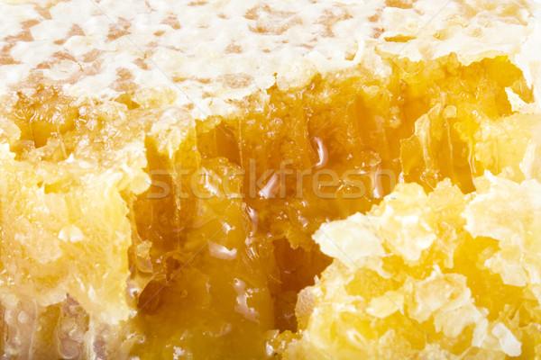 świeże plaster miodu charakter zdrowia tle komórek Zdjęcia stock © lucielang