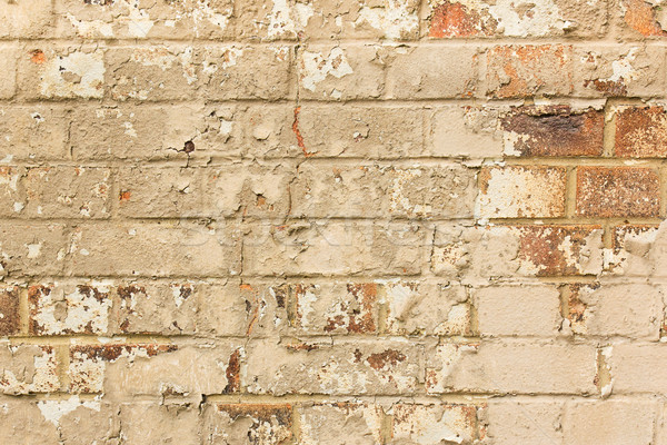 Aged crumbling brick wall texture background Stock photo © lucielang