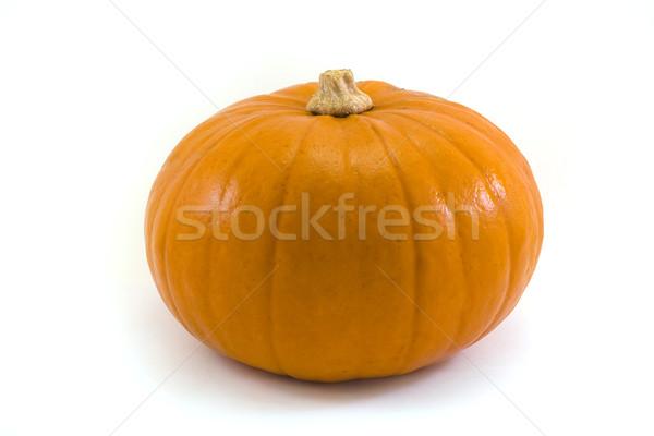 Single pumpkin over white Stock photo © lucielang