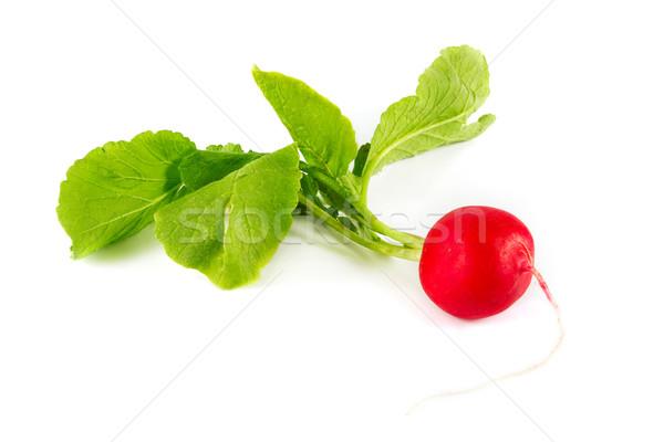 Radijs witte voedsel bladeren Rood salade Stockfoto © lucielang