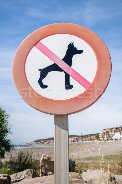 нет собаки знак пляж трава фон Сток-фото © lucielang