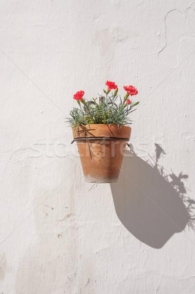 Perete ghiveci de flori traditional spaniol stradă verde Imagine de stoc © lucielang