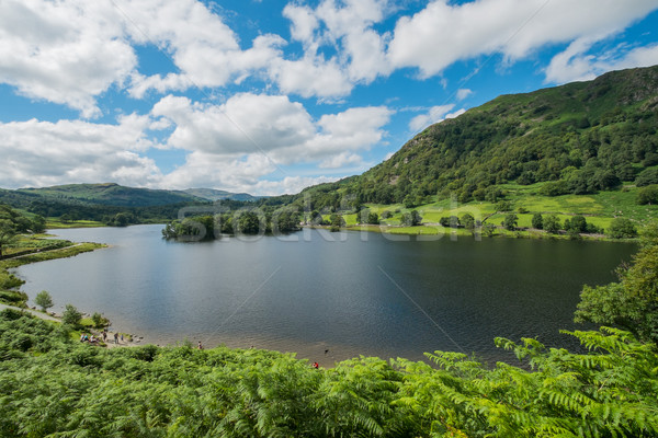 Agua paisaje árboles verano lago Foto stock © lucielang