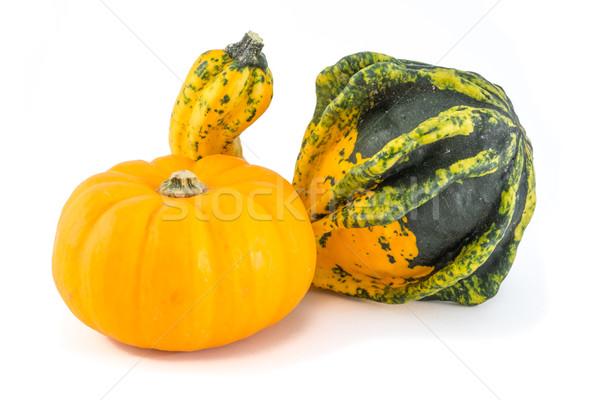 Autumn squashes. Stock photo © lucielang