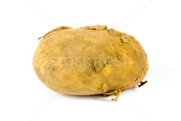 Single organic dirty potato on white Stock photo © lucielang