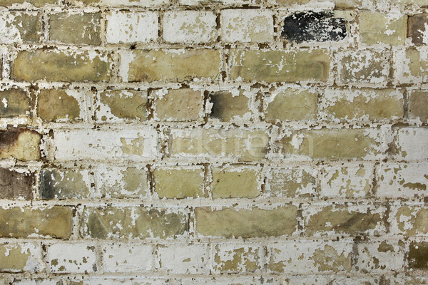 Old brick wall texture background Stock photo © lucielang