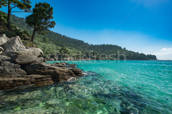 Greek Coastline. Stock photo © lucielang