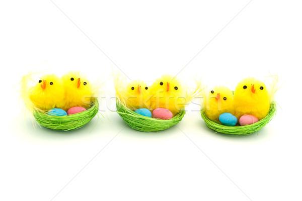 Três páscoa garotas ninho verde ovo Foto stock © lucielang