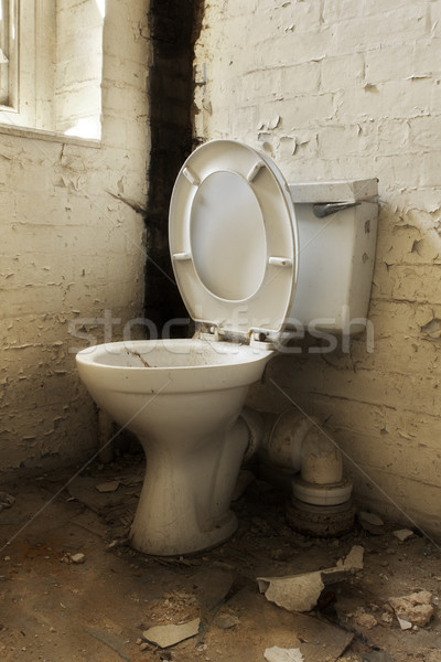 Broken old abandoned toilet Stock photo © lucielang