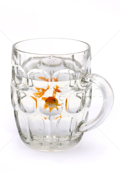 Goldfish in a glass beer tankard Stock photo © lucielang
