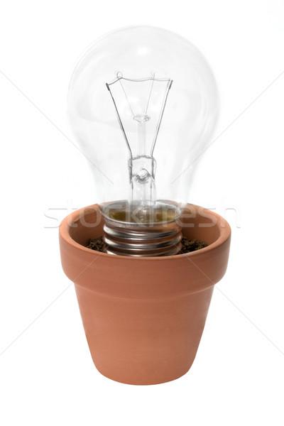 Pote branco vidro lâmpada Foto stock © lucielang