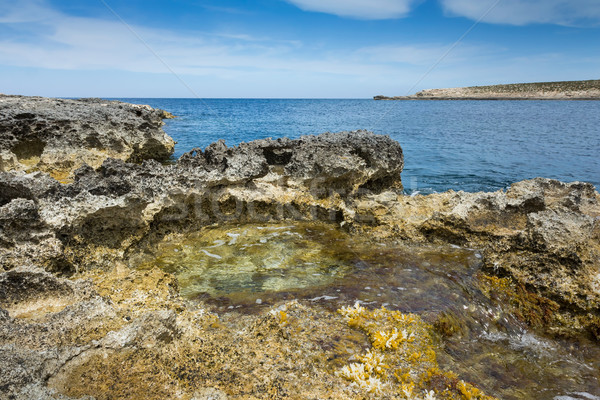 Rock pool by the sea Stock photo © lucielang