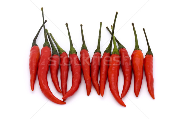 A line of red birds eye chillies Stock photo © lucielang