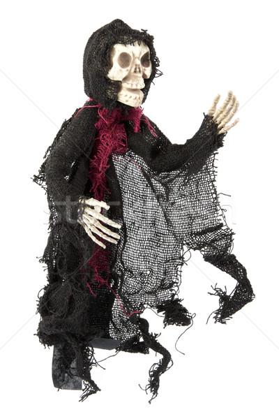 Scary Halloween skeleton on white Stock photo © lucielang