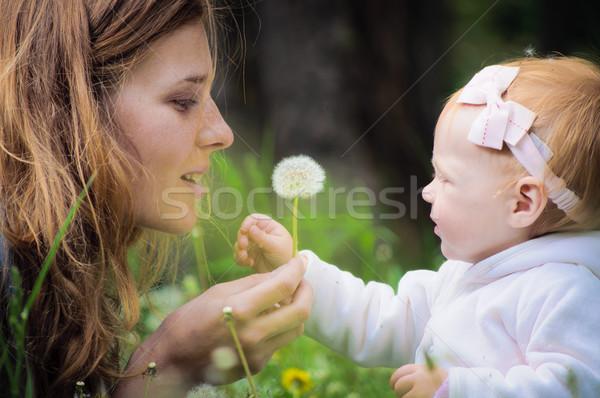 Giovani madre piccolo baby parco ragazza Foto d'archivio © luckyraccoon