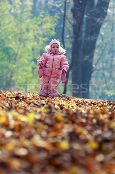 Divertente baby giocare foglie parco foglia Foto d'archivio © luckyraccoon