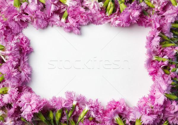 Buquê belo lona pano textura cópia espaço Foto stock © luckyraccoon