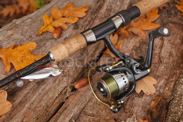 Halászat fából készült felület viharvert hal sport Stock fotó © luckyraccoon