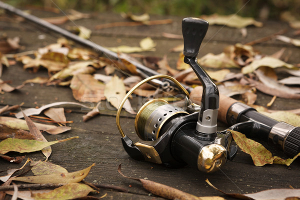Fishing tackle on wooden surface. Stock photo © luckyraccoon