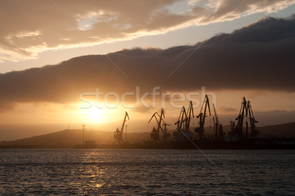 Morning harbour Stock photo © luckyraccoon