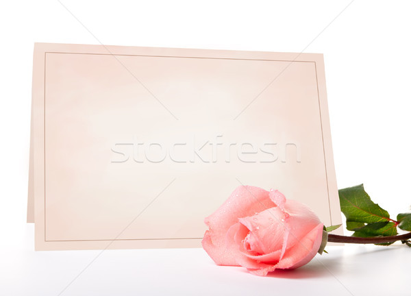 blank card for congratulations Stock photo © luckyraccoon