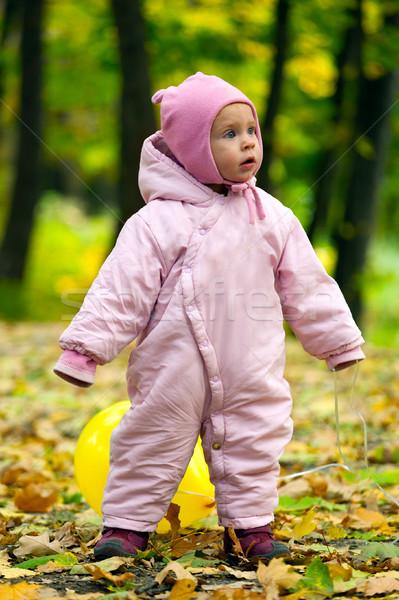 Pequeño hojas de otoño amarillo globo Foto stock © luckyraccoon