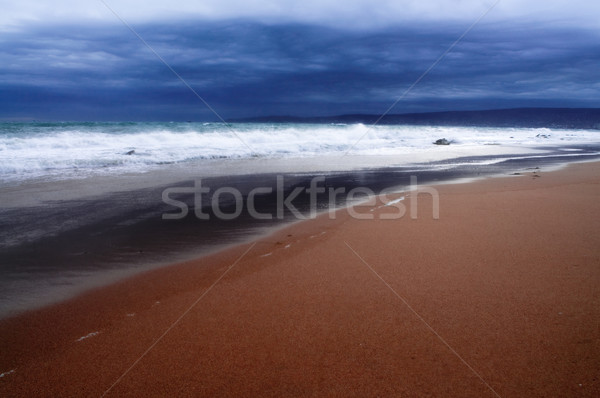 Stormy seashore Stock photo © luckyraccoon