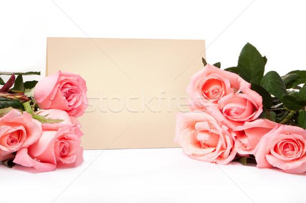 Boş kart tebrikler güller çiçekler kâğıt düğün Stok fotoğraf © luckyraccoon