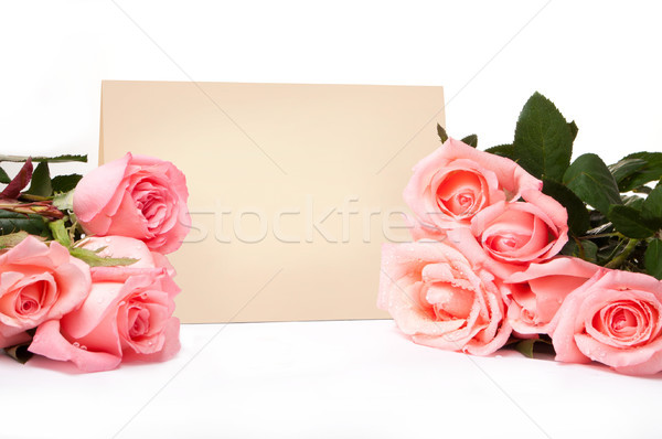 пустую карту Поздравляю роз цветы бумаги свадьба Сток-фото © luckyraccoon