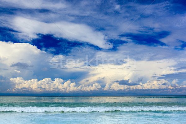 Beautiful summer seascape  Stock photo © luckyraccoon