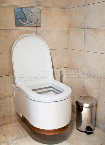 Toilet Stock photo © luckyraccoon