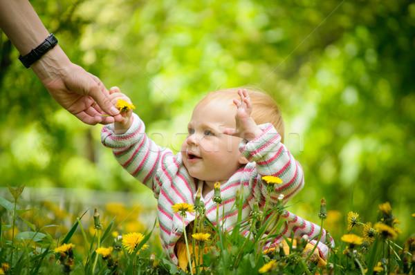 Portret cute weinig baby gras outdoor Stockfoto © luckyraccoon