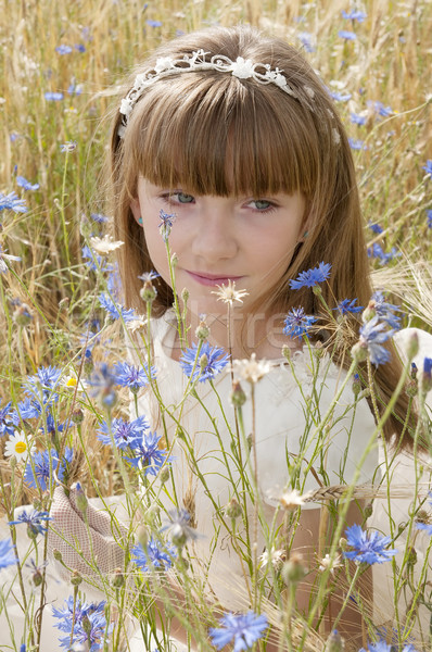 Comunhão menina vestir campo festa modelo Foto stock © luiscar