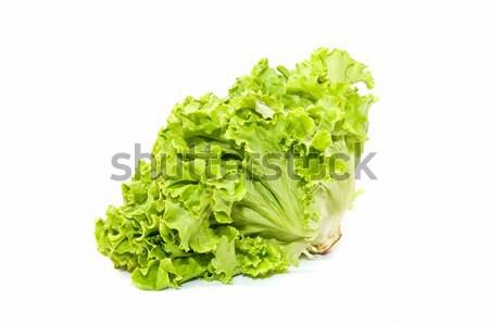 Alface ecológico branco planta legumes Foto stock © luiscar