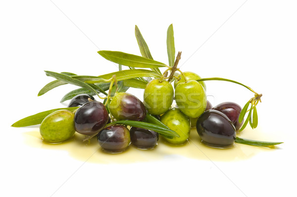 Taze zeytin zeytinyağı beyaz gıda Stok fotoğraf © luiscar