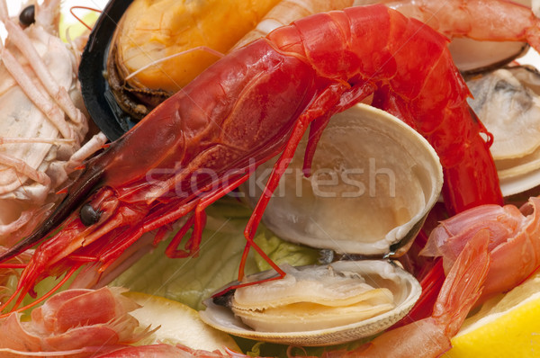 freshly caught seafood Stock photo © luiscar