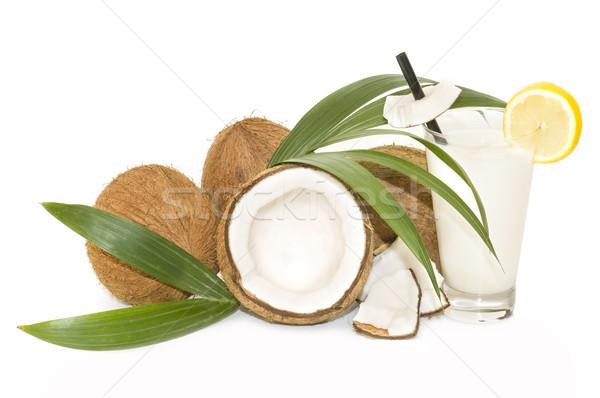 Kókuszdió csendélet friss fehér étel háttér Stock fotó © luiscar