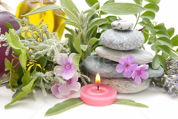 Spa natürmort aromatik otlar çiçek sağlık Stok fotoğraf © luiscar