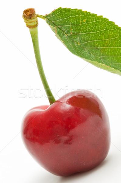 écologique cerises blanche fond rouge Photo stock © luiscar