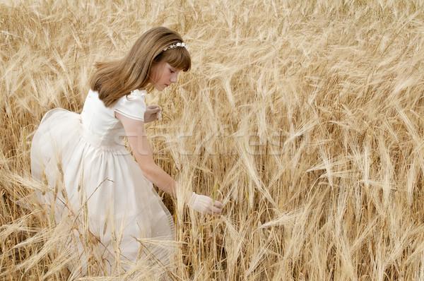 Comunhão menina vestir campo festa luz Foto stock © luiscar