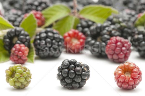 белый продовольствие лист фрукты Сток-фото © luiscar
