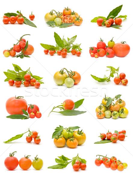 Ekologiczny pomidory kolekcja odizolowany biały charakter Zdjęcia stock © luiscar