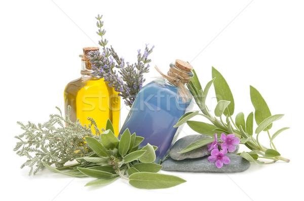 Spa martwa natura aromatyczny zioła kwiat zdrowia Zdjęcia stock © luiscar