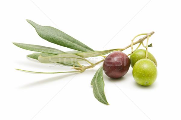 Aceitunas frescos blanco negocios alimentos salud Foto stock © luiscar