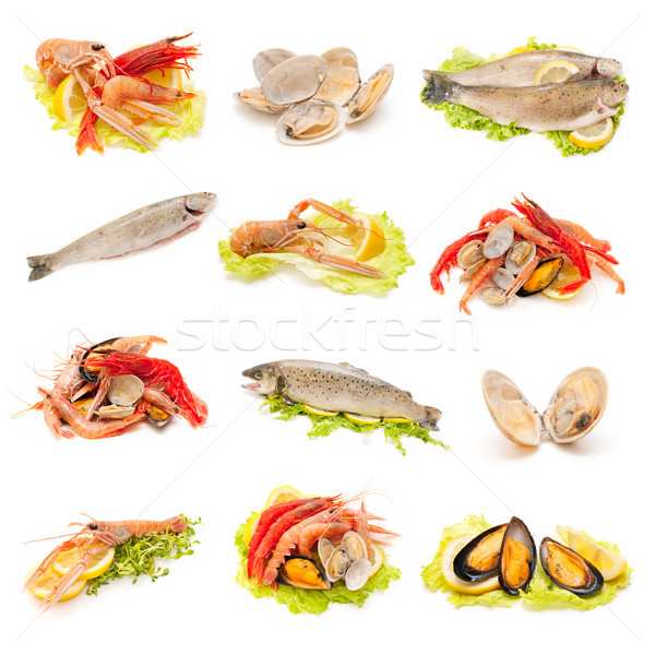 shellfish and fish Stock photo © luiscar
