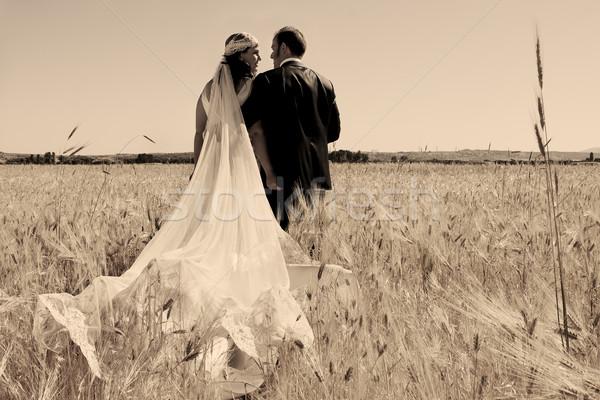 Wedding Coppia campo bella sposa amorevole Foto d'archivio © luiscar