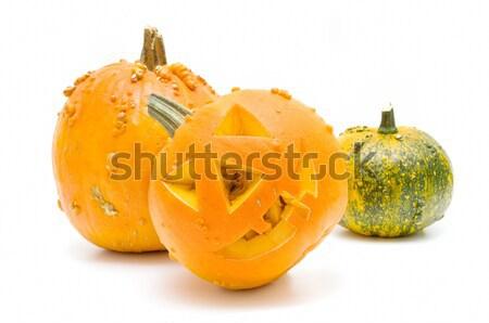 Halloween abóboras isolado branco fundo Foto stock © luiscar