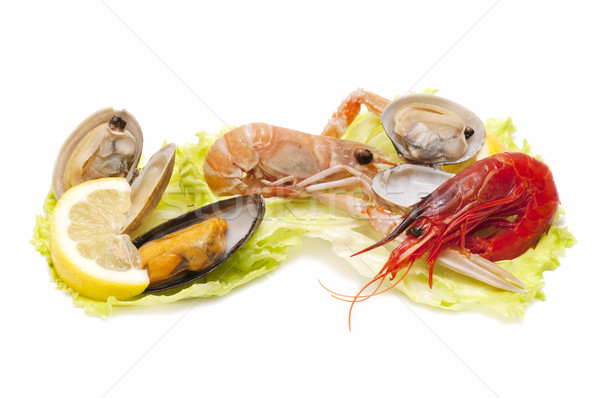 Owoce morza wybór biały działalności żywności Zdjęcia stock © luiscar