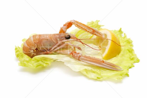 Frisch Meeresfrüchte weiß Business Essen Fisch Stock foto © luiscar