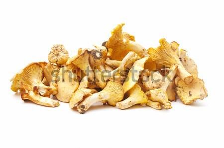 Sazonal cogumelos branco floresta natureza beleza Foto stock © luiscar